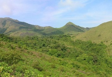 Coorg hill Station Tour